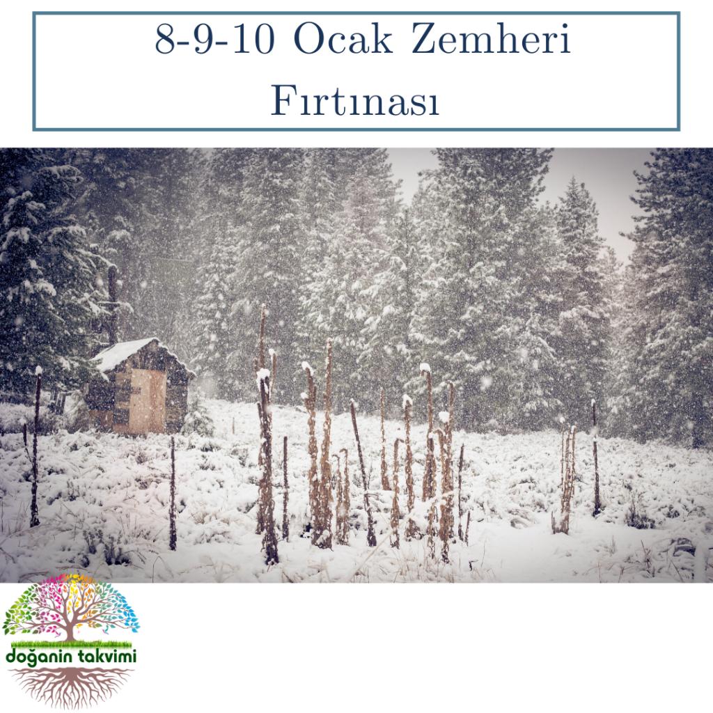 8-9-10 Ocak - Zemheri Fırtınası (Zemheri: Kışın en şiddetli zamanı anlamına gelir.) - Doğanın Takvimi