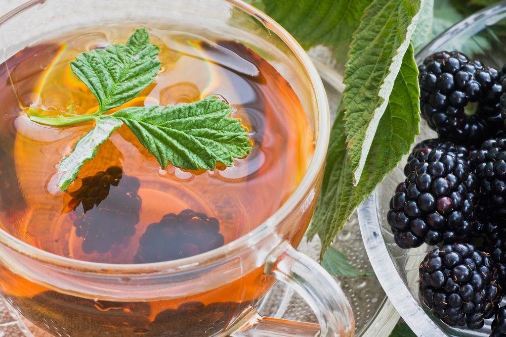 Böğürtlen Çayı - Doğanın Takvimi