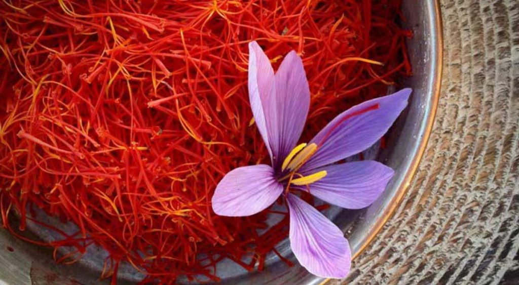Sayran Çayı - Doğanın Takvimi
