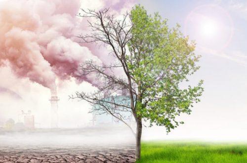 İtalya, İklim Değişikliği Eğitimini Zorunlu Hale Getiren İlk Ülke Oldu