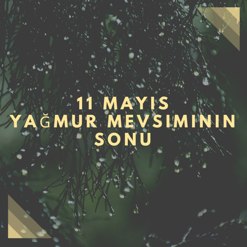 11 Mayıs - Yağmur Mevsiminin Sonu- Doğanın Takvimi