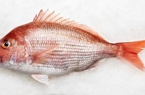 Hangi ayda hangi balık yenir